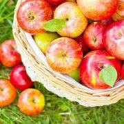 как приготовить компот из яблок рецепты 7