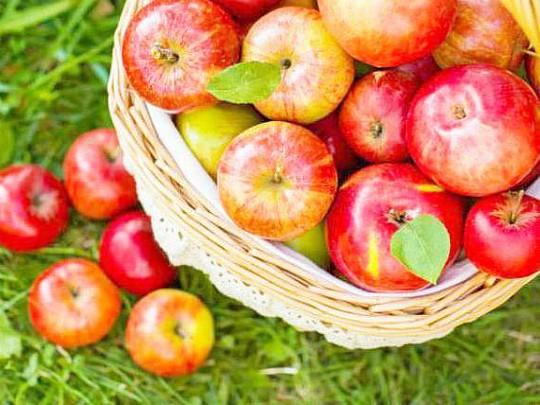 как приготовить компот из яблок рецепты