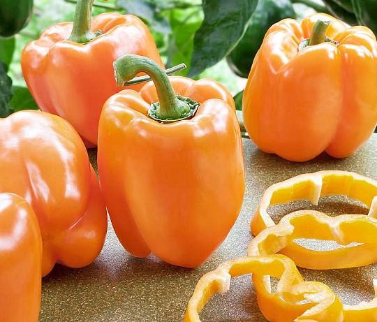 особенности выращивания сладкого перца в теплице и открытом грунте 2