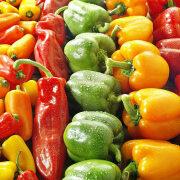 особенности выращивания сладкого перца в теплице и открытом грунте 8
