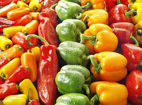 особенности выращивания сладкого перца в теплице и открытом грунте
