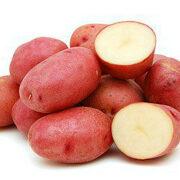 лучшие ультраранние сорта картофеля 1
